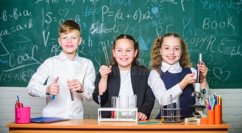 Kontrollergebnis Schulchemielektion Reagenzgläser mit bunten Substanzen Schullabor Gruppenschulschüler studieren lizenzfreies stockbild