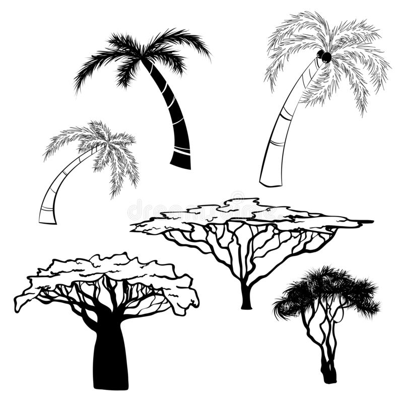 Kontur av africa träd royaltyfri illustrationer