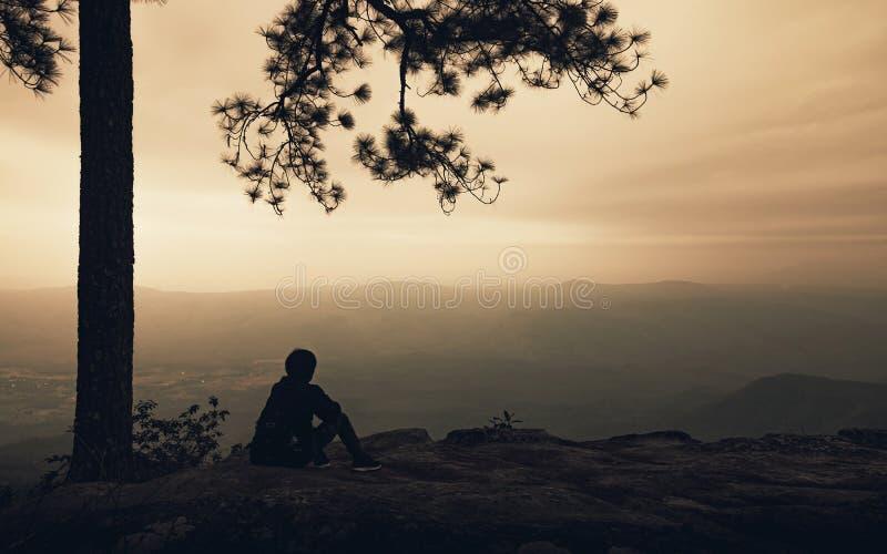 Kontur av bara mannen som sitter under stort träd på bergsikten med dimma i solnedgångbakgrund Fotvandrarelopplivsstil och royaltyfria bilder