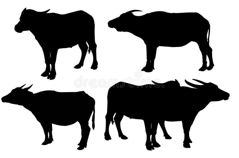 Kontur av buffeln som isoleras på den thailändska buffeln för vit bakgrund på den vita bakgrundsbuffeln i Thailand stock illustrationer