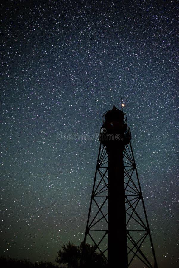 Kontur av den gamla fyren och träden mot bakgrunden av den stjärnklara himlen royaltyfri foto