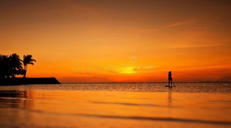 Kontur av den standup skovelboarderen på solnedgången royaltyfri foto