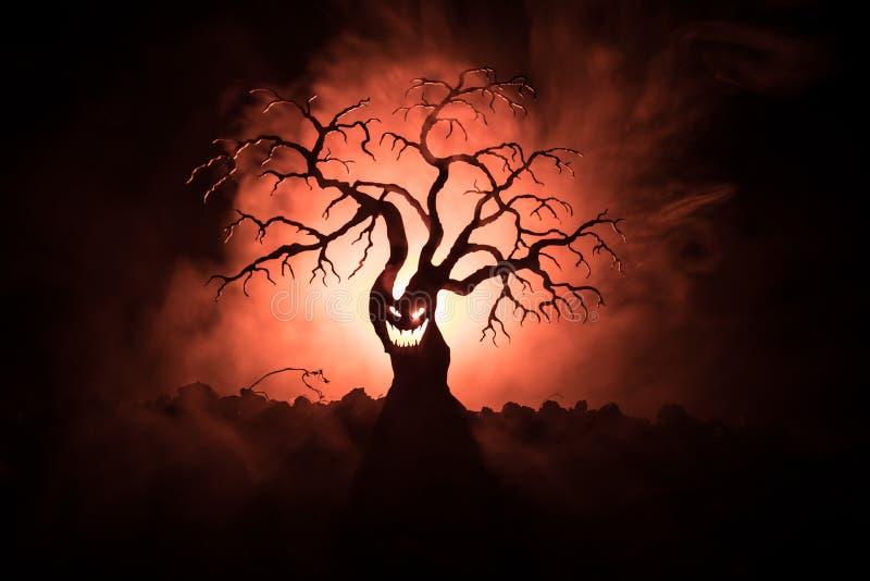 Kontur av det läskiga allhelgonaaftonträdet med fasaframsidan på mörk dimmig tonad bakgrund med månen på tillbaka sida Läskigt fa royaltyfria bilder