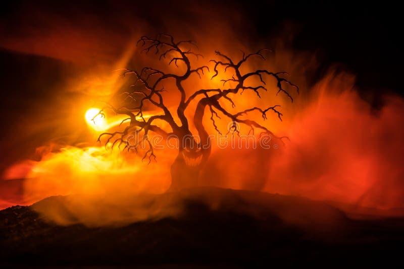 Kontur av det läskiga allhelgonaaftonträdet med fasaframsidan på mörk dimmig tonad brand Läskigt begrepp för fasaträdallhelgonaaf royaltyfri fotografi