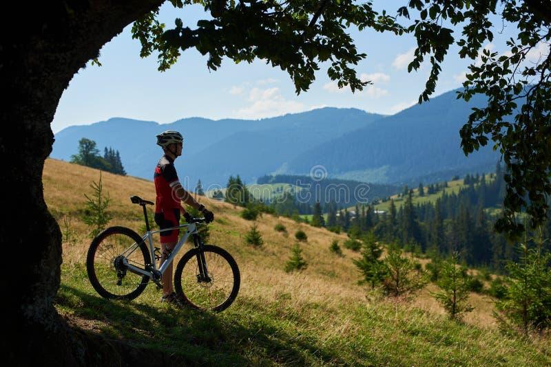 Kontur av det yrkesmässiga idrottsmancyklistanseendet med cykeln på den gräs- kullen nära stort träd royaltyfri bild