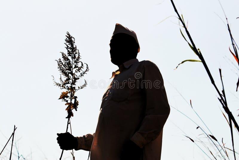 Kontur av en bonde i maharashtraen, Indien arkivfoto