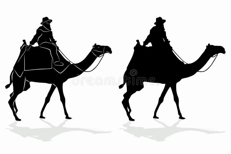 Kontur av en cameleer, vektorteckning vektor illustrationer