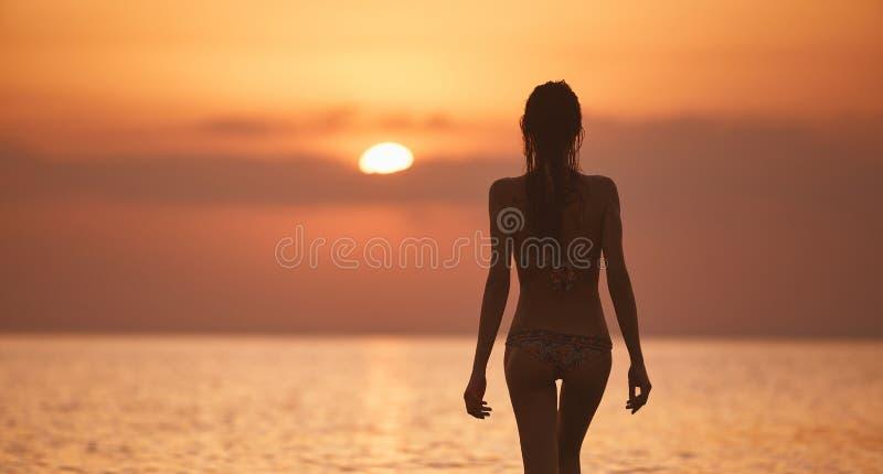 Kontur av en härlig sexuell flicka mot havet och solnedgången royaltyfri fotografi