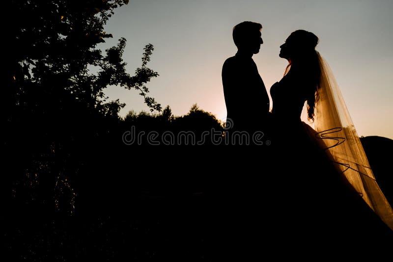 Kontur av ett älska par fotografering för bildbyråer