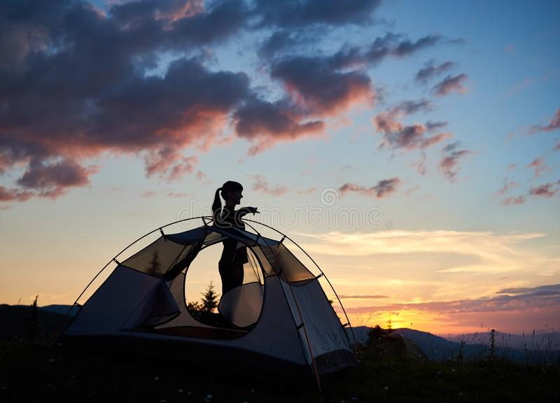 Kontur av ett attraktivt flickaanseende i profil nära tältet under morgonhimlen på gryningen royaltyfria foton