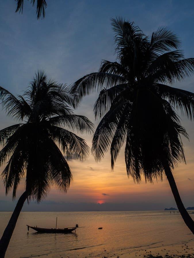 Kontur av ett fartyg och palmträd mot inställningssolen med moln royaltyfri foto
