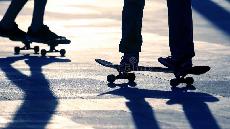 Kontur av folk som rider p? en skateboard i solen royaltyfri foto