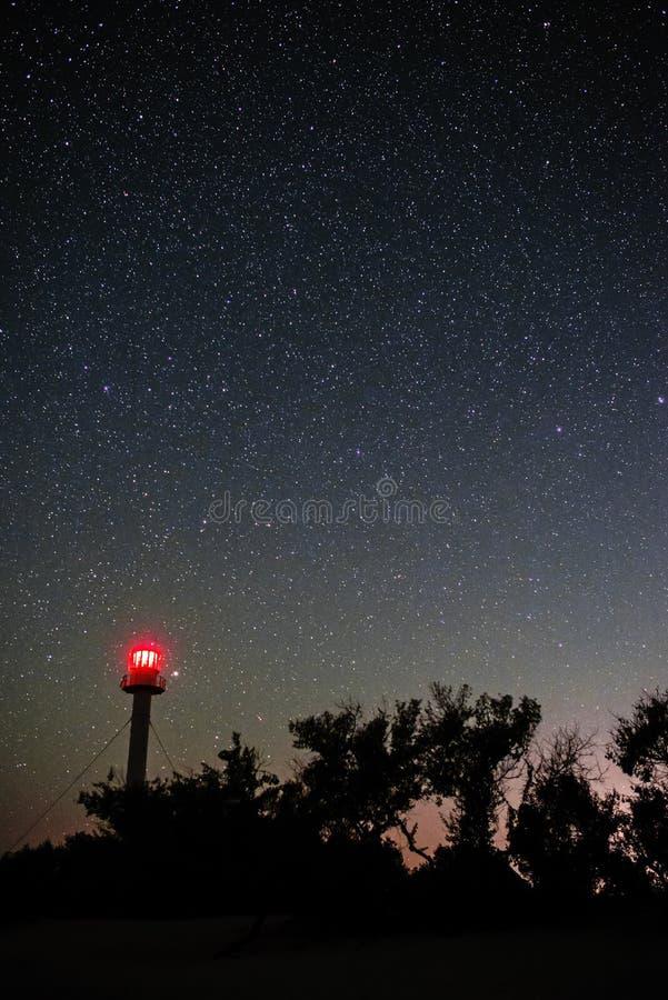 Kontur av fyren och träden mot bakgrunden av den stjärnklara himlen arkivfoton