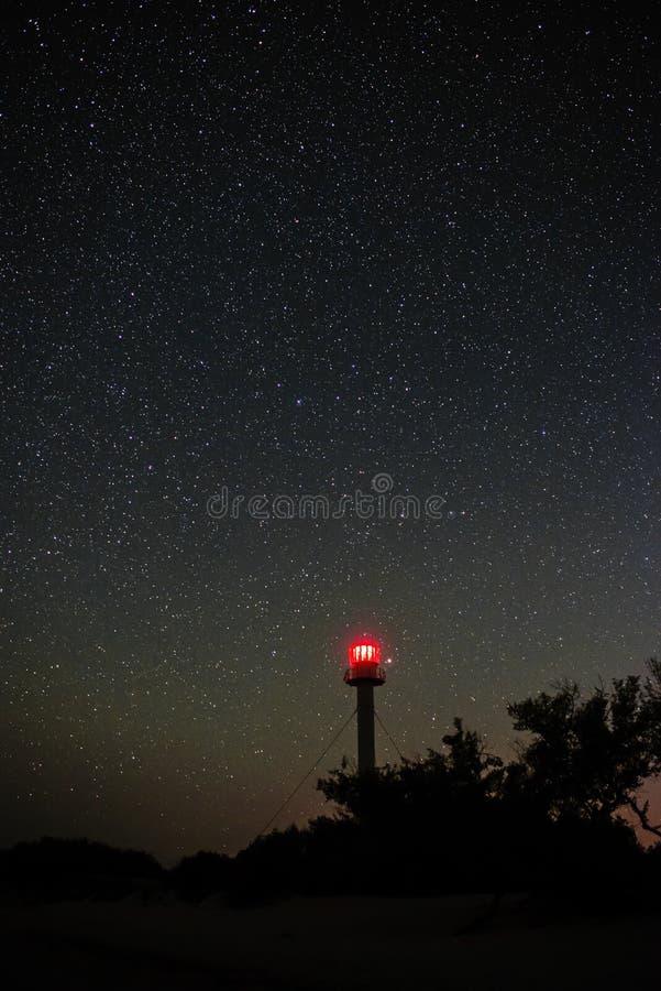 Kontur av fyren och träden mot bakgrunden av den stjärnklara himlen royaltyfri bild