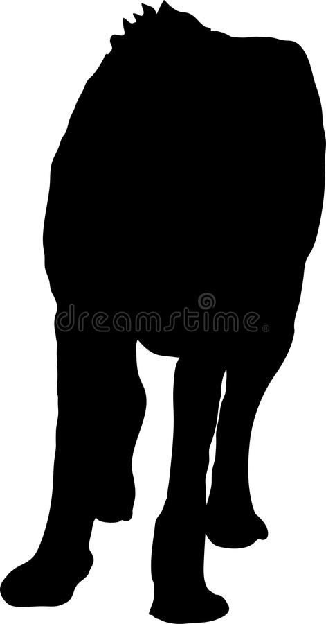 Kontur av gå den hungriga och ilskna geparden vektor illustrationer