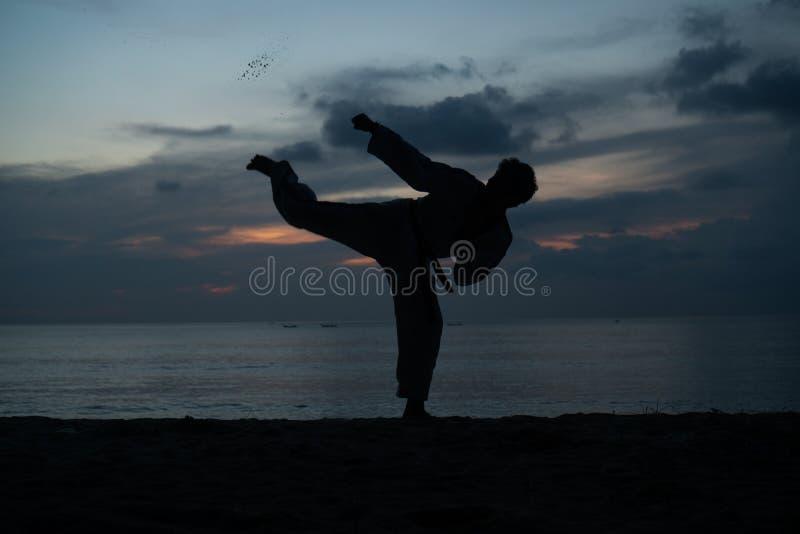 Kontur av kampsportmannen som utbildar Taekwondo arkivbild
