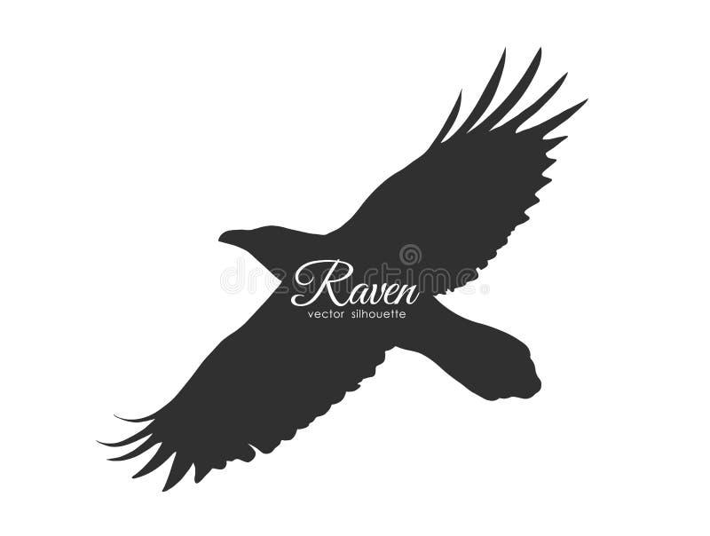 Kontur av korpsvart för flyg som isoleras på vit bakgrund Svart fågel i fluga royaltyfri illustrationer