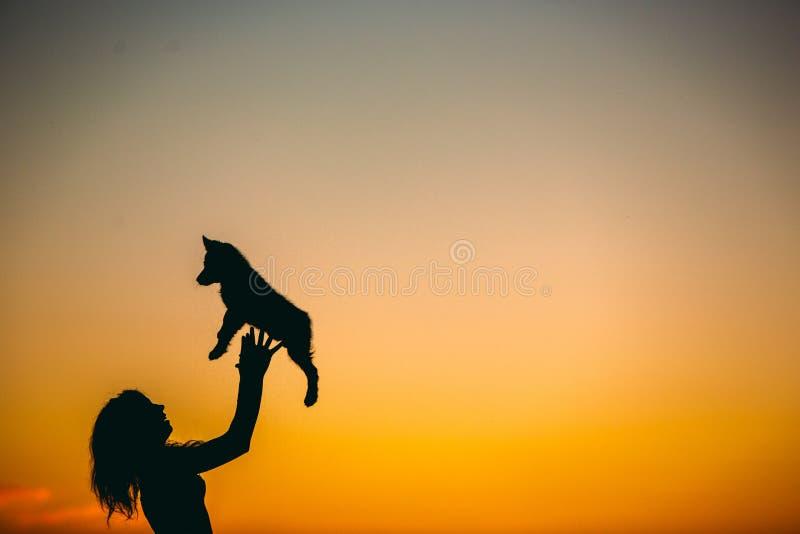 Kontur av kvinnan som spelar med hunden på solnedgången arkivfoto