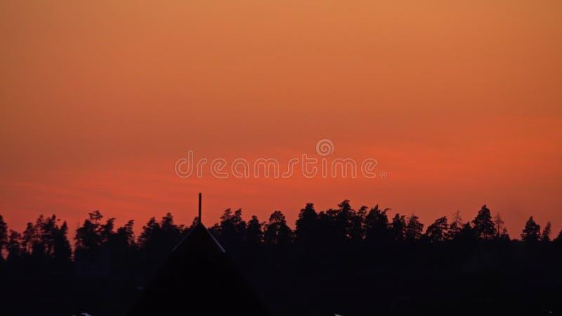 Kontur av sommarskogträd mot orange solnedgånghimmel arkivfoton