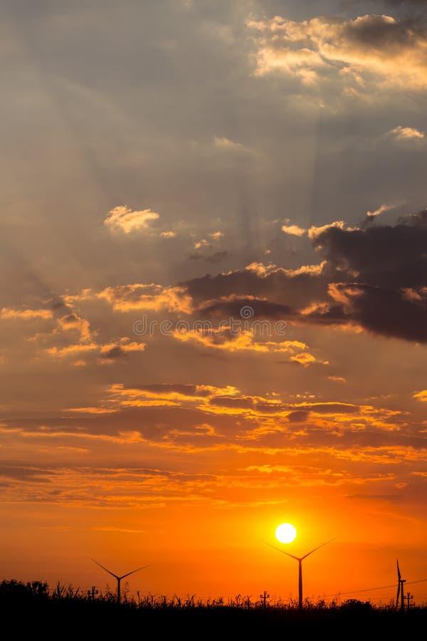 Kontur av träd och vindturbiner på färgrik bakgrund för delvis molnig himmel royaltyfri fotografi