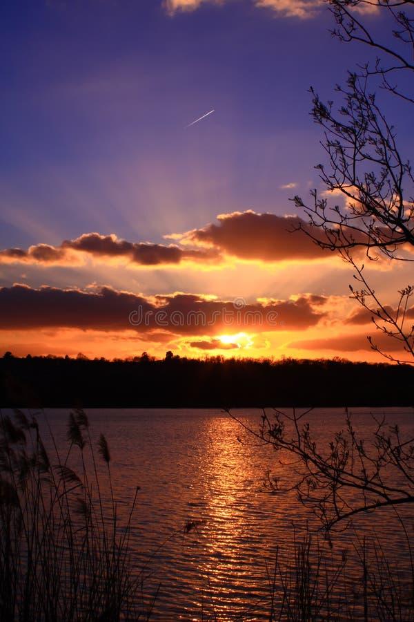 Kontur av vasser och knoppar av träd framme av en härlig färgrik solnedgång royaltyfri foto