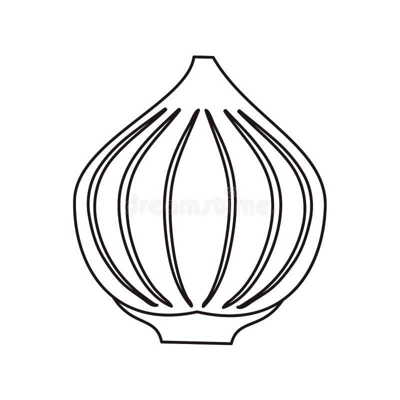 Kontur cebulkowa jarzynowa korzenna naturalna ikona ilustracja wektor