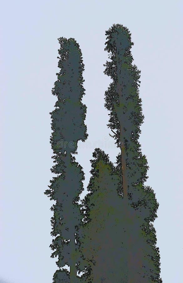 Kontur för högväxta träd mot klar himmelbakgrund - Minimalistic illustration royaltyfri illustrationer