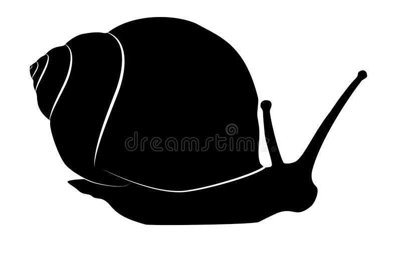 Kontur för snigelkrypningsvart på vit, vektor eps 10 vektor illustrationer