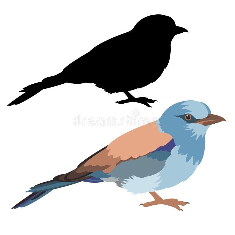 Kontur för svart för stil för lägenhet för illustration för rullfågelvektor royaltyfri illustrationer