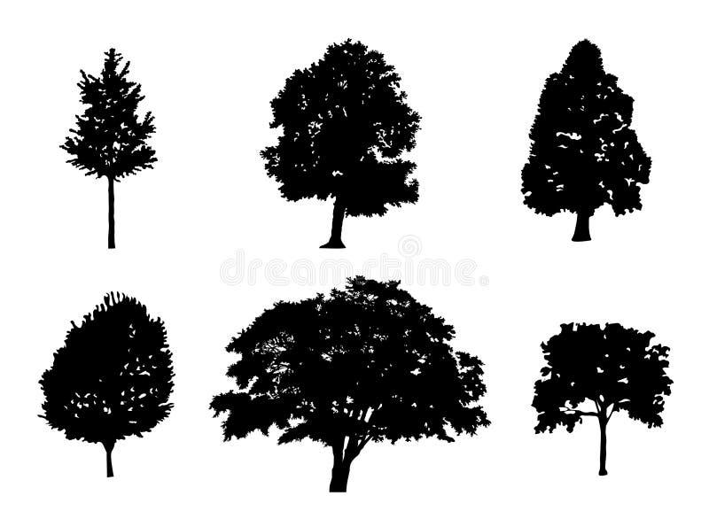 Kontur för trädsamlingsvektor stock illustrationer