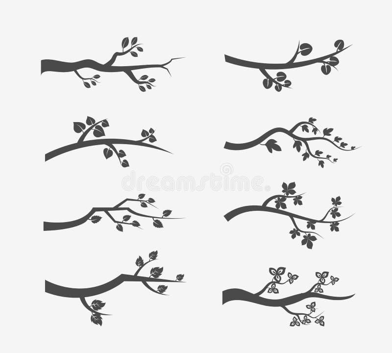 Kontur för vektorträdfilialer med sidor royaltyfri illustrationer