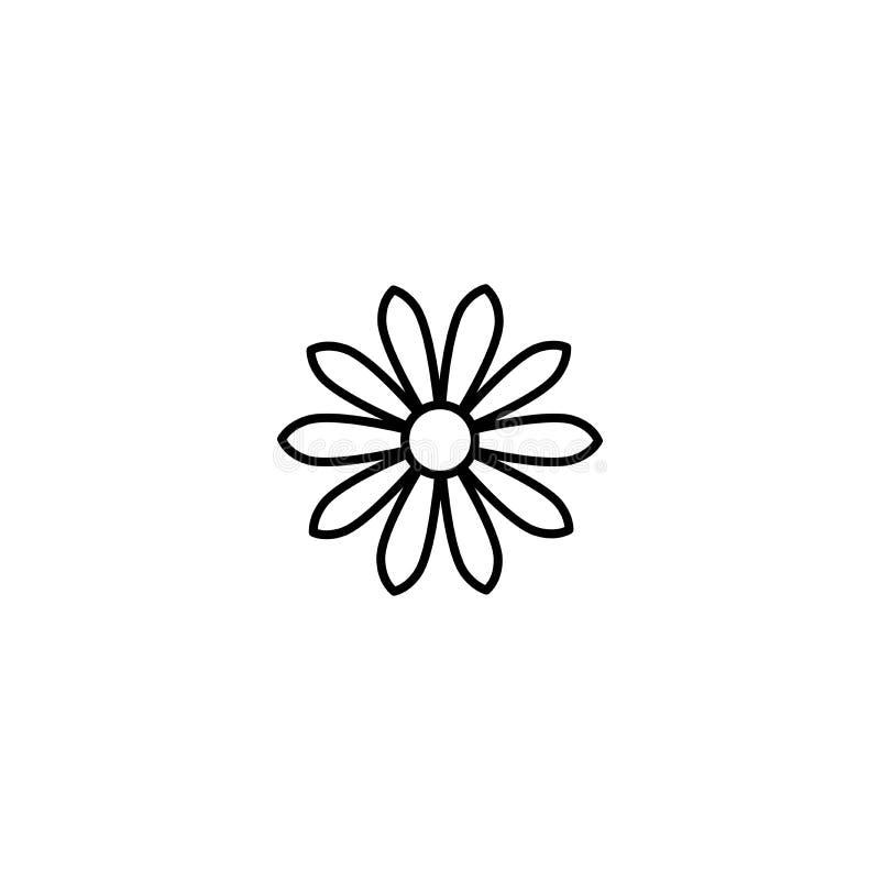 Kontur płaska ikona stokrotka kwiat Kreskowy znak odizolowywający na bielu wektor royalty ilustracja
