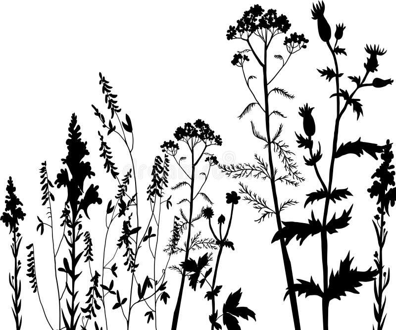 Konturer av blommor och gräs royaltyfri illustrationer