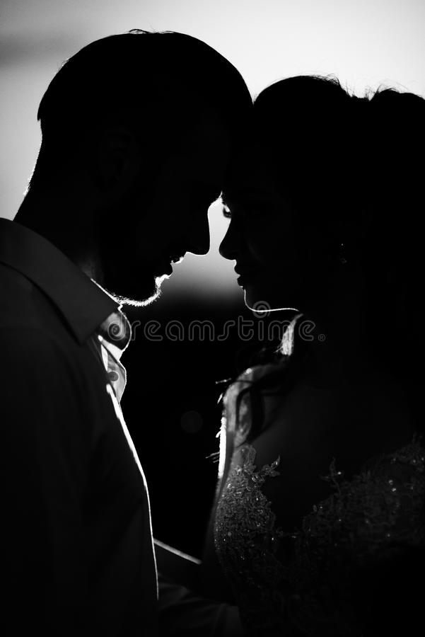 Konturer av de unga paren av bruden och brudgummen royaltyfri fotografi
