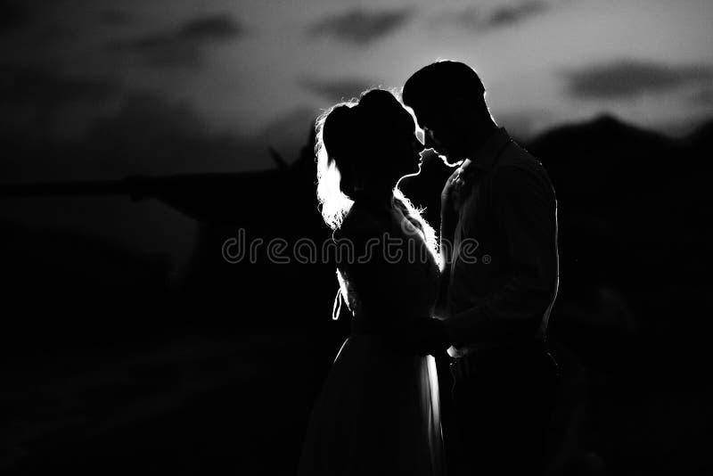 Konturer av de unga paren av bruden och brudgummen arkivfoto