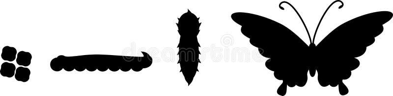 Konturer av fyra etapper av fjärilsutveckling stock illustrationer