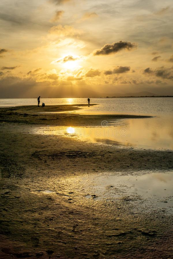 Konturer av oigenkännligt folk på stranden på solnedgången med det lugna havet arkivfoton