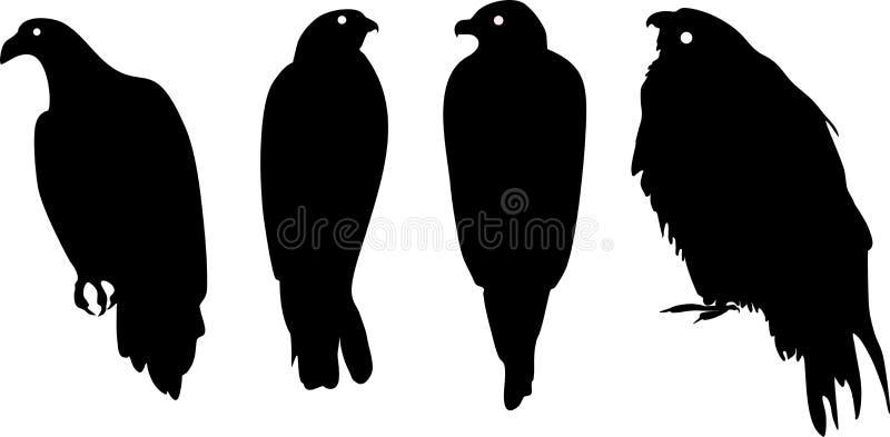Konturer av olika fåglar av rovet royaltyfri illustrationer