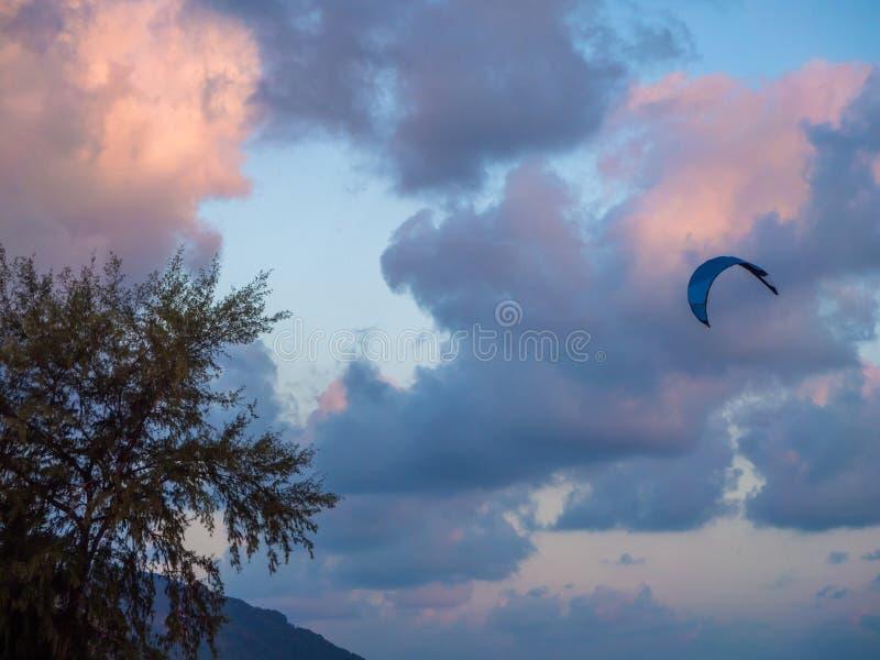 Konturer av tr?d mot den bl?a himlen och def?rgade molnen arkivfoto