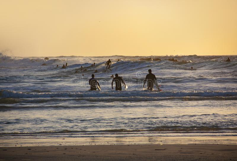 Konturer av tre surfare på solnedgången på stranden royaltyfria foton