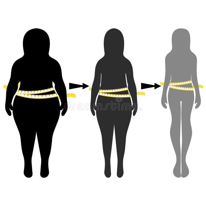 Konturer av tunna kvinnor som är tjocka och vektor stock illustrationer