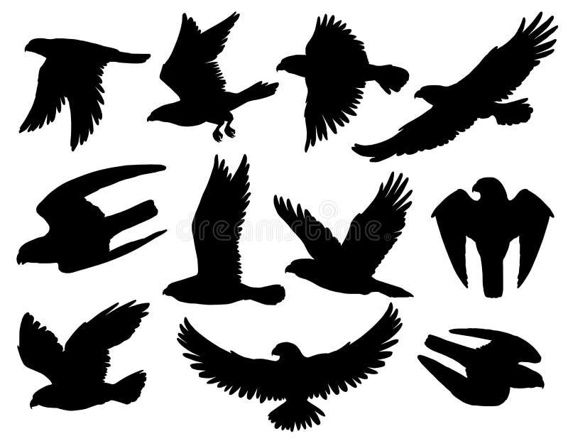 Konturer för Eagle fågelsvart av falken och höken stock illustrationer