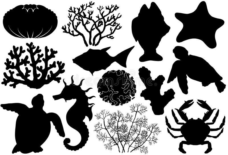 Konturer för havlivorganismer, skal, fisk, koraller, havshäst, krabba och sköldpadda vektor illustrationer