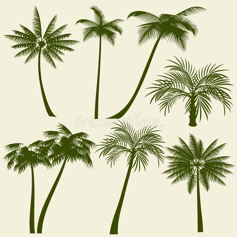 Konturer för vektor för palmträd för sommarferie royaltyfri illustrationer