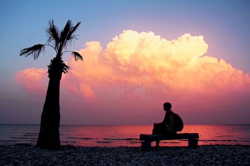 Konturflicka med ryggsäcken som sitter på bänk på en tom strand med den ensamma palmträdet och ser en fantastisk purpurfärgad sol royaltyfria foton