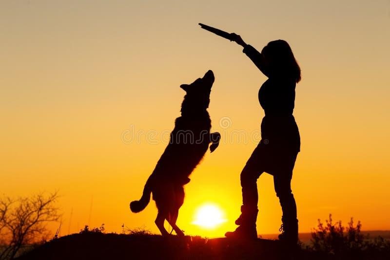 Konturkvinna som går med en hund i fältet på solnedgången, husdjur som hoppar upp för en träpinne i flickans hand som spelar med  arkivbild