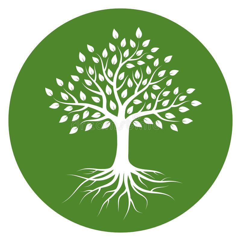 Konturn av ett träd med rotar och lämnar i cirkel Vit f?rg p? gr?n bakgrund vektor illustrationer