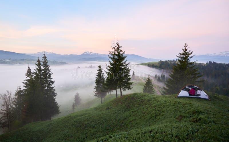 Konturn av flickan i turist- tält på den gräs- kullen på den dimmiga dalen, sörjer träd och det avlägsna berget royaltyfri fotografi