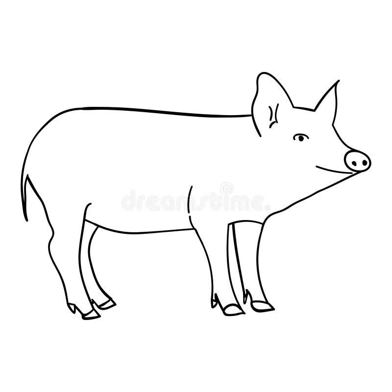 Konturnschwein in der Gekritzelart vektor abbildung