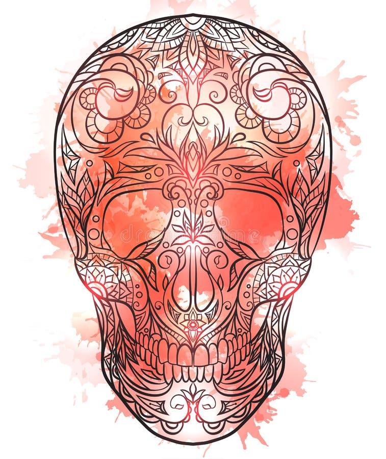Konturowa ilustracja cukrowa czaszka z akwarelą bryzga ilustracja wektor